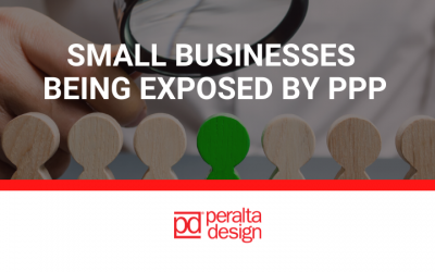 Small Businesses are Being Exposed by PPP